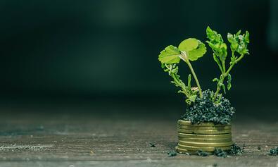 ¿Qué es un terreno de inversión?